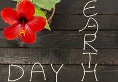 piękna kwiatu poślubnika czerwień Ziemskiego dnia pojęcie Ekologia dzień fotografia stock