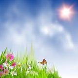 Piękna lata łąka. ilustracja wektor