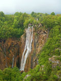 piękna leśna wodospadu Zdjęcia Stock