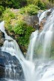 piękna leśna wodospadu fotografia royalty free