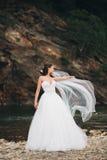 Piękna luksusowa młoda panna młoda stoi blisko rzeki z górami na tle w długiej białej ślubnej sukni i przesłona zdjęcie royalty free