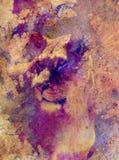 Piękna lwica i graficzny skutek komputerowy kolaż Fotografia Royalty Free
