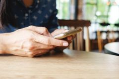 Piękna młoda azjatykcia kobieta używa smartphone i trzymający karciany dla robić zakupy online zapłatę Zakupy pojęcie z kopii prz Zdjęcie Stock