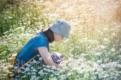 Piękna młoda dziewczyna siedzi w stokrotki polu - lata photogra obrazy stock