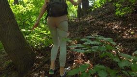 Piękna młoda dziewczyna z plecaka wycieczkować ciężki w pogodnym lasu 4K steadicam strzale zbiory