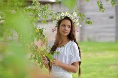 Piękna młoda dziewczyna z pleceniami i stokrotkami Obraz Stock