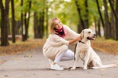 Piękna młoda kobieta chodzi z jej aporterem w parku w jesieni zdjęcie stock