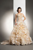 Piękna młoda kobieta w ślubnej sukni Obrazy Royalty Free