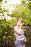 Piękna młoda kobieta w ciąży pozycja w lecie w jabłczanym sadzie i łasowań jabłkach fotografia stock