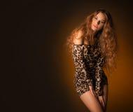 Piękna młoda kobieta w lampart sukni Zdjęcia Stock