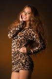 Piękna młoda kobieta w lampart sukni Fotografia Royalty Free