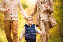 Piękna młoda rodzina na spacerze w jesień lesie obraz stock