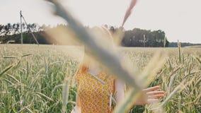 Piękna młoda romantyczna dziewczyna chodzi samotnie przez pola zielona banatka i dotyka pszenicznych ucho Kocha naturę zbiory