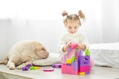 Piękna mała dziewczynka bawić się z klingeryt zabawki blokami Pies l zdjęcie royalty free