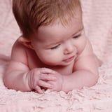 Piękna mała dziewczynka w studiu fotografia royalty free