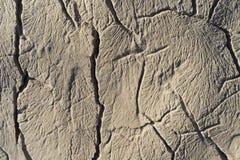 Piękna makro- fotografia tekstury, wzory i szczegóły od, skały, kamienia i rafy wokoło Adriatyckiego morza, Obraz Stock