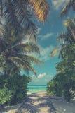 Piękna Maldives plaża, rocznika filtr Zdjęcie Stock