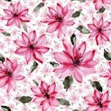 Piękna menchia kwitnie z liśćmi na białym tle bezszwowy kwiecisty wzoru adobe korekcj wysokiego obrazu photoshop ilości obraz cyf ilustracja wektor
