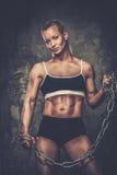Piękna mięśniowa bodybuilder kobieta Obrazy Royalty Free