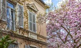 Piękna mieszkaniowa architektura i ogródy w wiośnie na obrazy royalty free