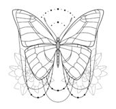 Piękna motylia ikona Monochromatyczna wektorowa ilustracja odizolowywa na białym tle Insekt sztuka element dekoracyjny ilustracji