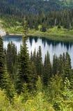 piękna na północny zachód Obrazy Royalty Free