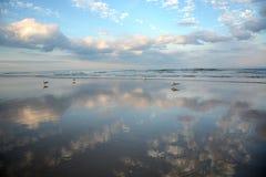 piękna na plaży Obraz Stock