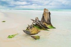 piękna na plaży Burzy niebo nad morzem Fotografia Stock