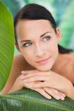 Piękna naga brunetka pozuje z zielonymi liśćmi Fotografia Stock