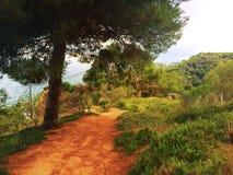 Piękna natura Hiszpania na słonecznym dniu zdjęcia royalty free