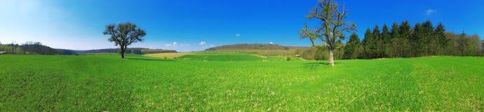 Piękna natura, lata gospodarstwo rolne, lato segregujący, lato w Luksemburg, Europa Obrazy Royalty Free