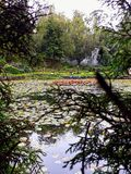 Piękna natura przez drzew zdjęcia stock