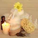 piękna naturalny produktów skincare Obrazy Royalty Free