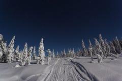 Piękna natury i krajobrazu fotografia Szwecja Scandinavia przy zimną zimy nocą obrazy royalty free