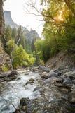 Piękna Niewygładzona Halna rzeka krajobrazu scena fotografia stock
