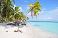 Piękna osamotniona karaibska plaża przy San Blas wyspą, Panama. Ameryka Środkowa Fotografia Stock