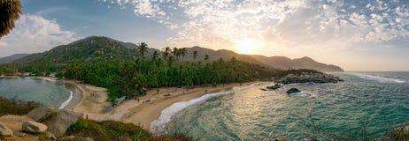 Piękna osamotniona Karaiby plaża z drzewkami palmowymi w Tayrona parku narodowym, Kolumbia obraz royalty free