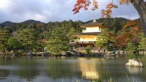 Piękna pagoda San Kiyomizu-dera w spadku kolorze zdjęcie wideo