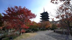Piękna pagoda San Kiyomizu-dera w spadku kolorze zbiory