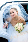 piękna panna młoda najbardziej Fotografia Royalty Free