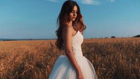 Piękna panna młoda w pszenicznym polu na zmierzchu zbiory