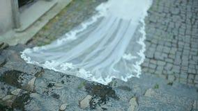 Piękna panna młoda z Długim przesłona puszkiem schodki kamień zbiory