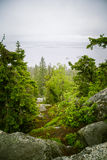 Piękna panorama jezioro i las od Kola parka narodowego osiąga szczyt Fotografia Stock