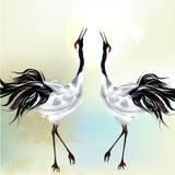 Piękna para ptaki Obrazy Royalty Free