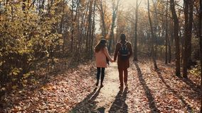 Piękna para w ranku lesie zdjęcie wideo