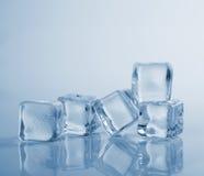 Piękna pięć kostek lodu studia świeży strzał Fotografia Royalty Free