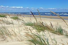 Piękna piasek plaża z płochami, badylami i ludźmi chodzić, fotografia royalty free