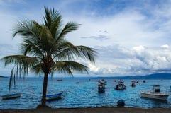 Piękna piaskowata plaża - Costa Rica Zdjęcie Stock