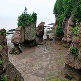 Piękna piaskowata plaża z skałami obrazy royalty free