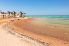 Piękna plaża Czerwony morze Zdjęcie Stock